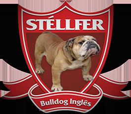 Canil Stéllfer