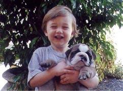 o_bulldog_e_adequado2-canil_stellfer